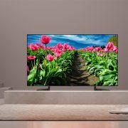 قیمت و مشخصات تلویزیون 4K سونی 55X9000F